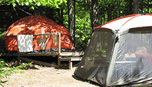 tents in the woods on platforms